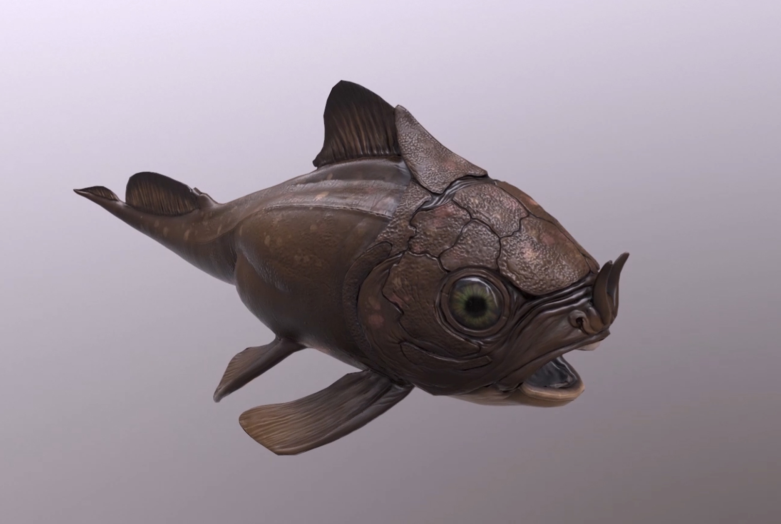 AR fish process (2019)